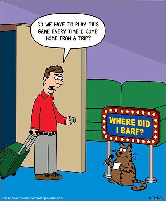 Funniest Cartoons Cat Cartoons Funny Pics Funny Animal Funny Cute