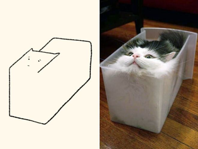 funny cat drawing2