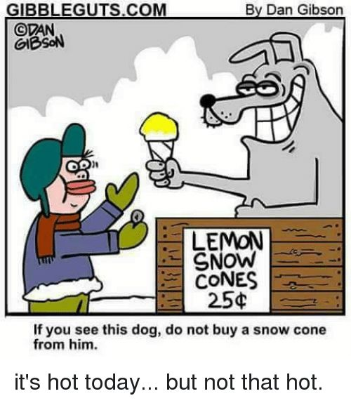 Memes Snow and Today GIBBLEGUTS By Dan Gibson OVAN GIBSON OD