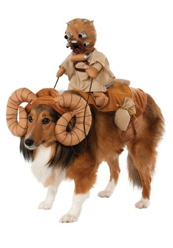 All across Tatooine Tusken Raiders look for the best mounts Now that mount is your dog with this Bantha Pet Costume licensed from Star Wars