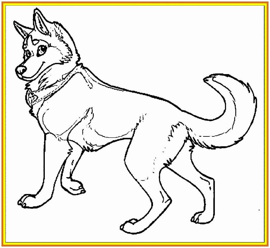 Coloring Picture Dog Awesome Fresh Colouring Family C3 82 C2 A0 0d Free Coloring Pages