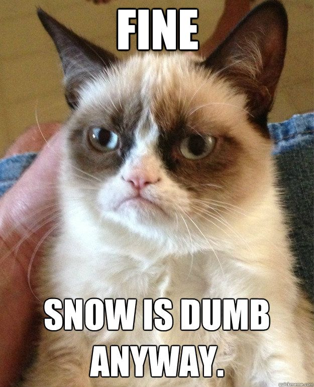 FINE Snow is dumb anyway