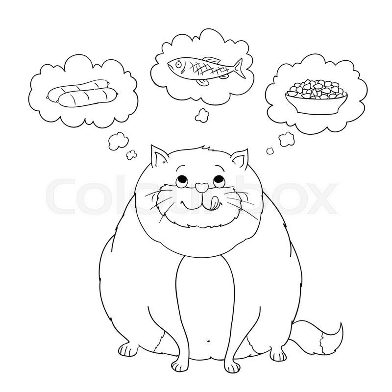 800x800 Funny Cartoon Fat Cat Thinking About Sausage Fish Food Coloring