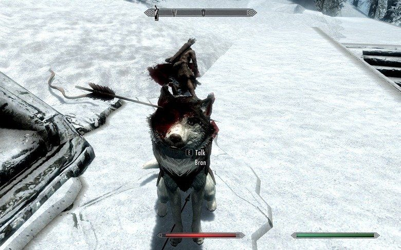 My dog got shot in the face in Skyrim and continued to fight through it