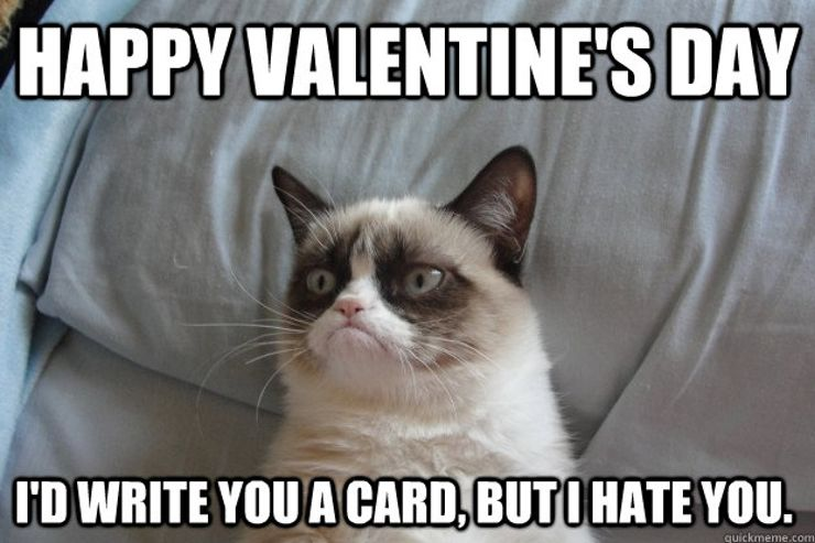 Find the Marvelous Funny Cat and Dog Valentines Memes
