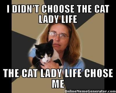Crazy Cat Lady memes More