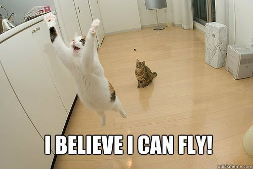 I believe I can fly Jumping Cat