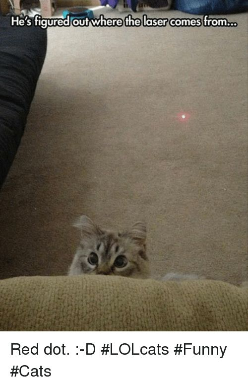 Memes LOLcats and 🤖 He s figuredout where the laser es from Red dot