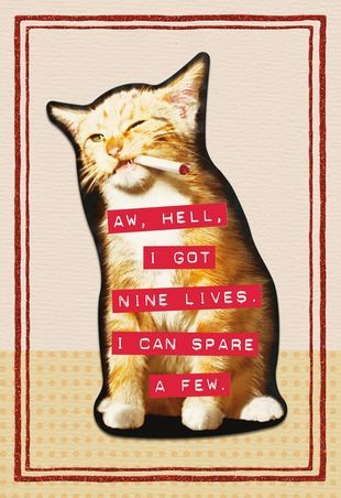 Nine Lives Funny Birthday Card root 499ZZB1827 PV 1 ZZB1827 Source Image