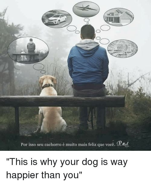 """Dogs Im 14 & This Is Deep and Dog 100 Por isso seu """""""