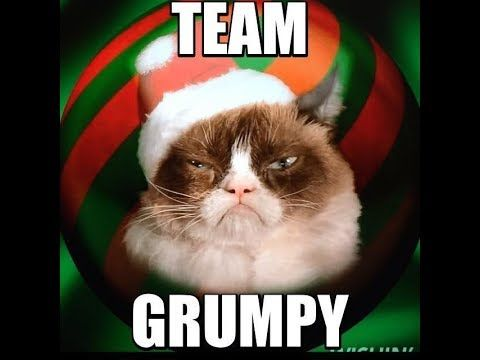 Grumpy Cat Memes Twinkle Twinkle Little Star