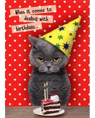 Oatmeal Studios Dealing With Birthdays Cat Funny Birthday Card