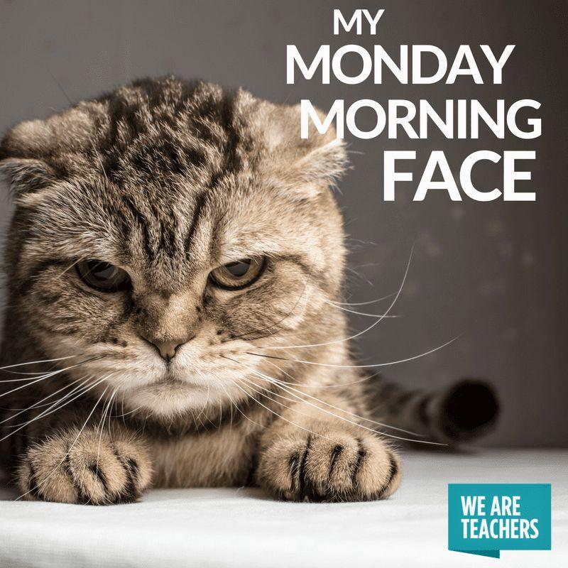 Teacher Meme Morning Face
