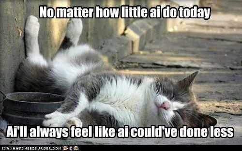 lazy sleep relax sloth Cats captions