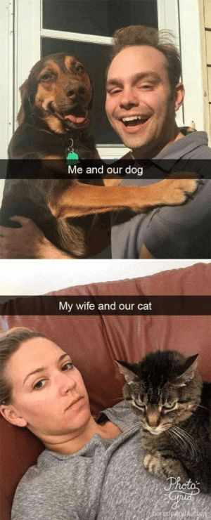 Animals Funny and Memes Me and our dog My wife and our cat