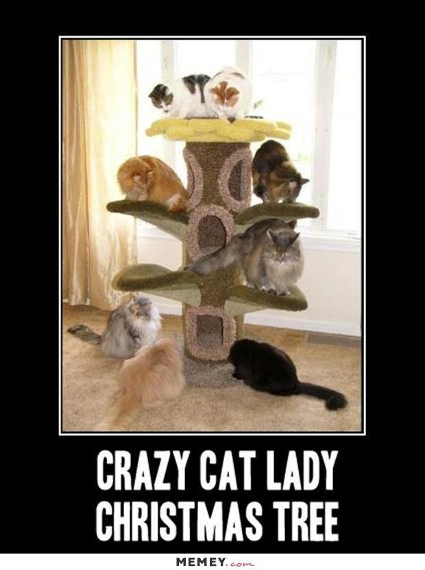 funny crazy cat lady christmas tree cats