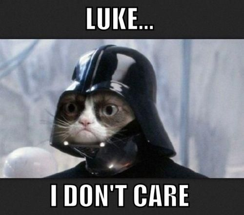 you it s Grumpy Cat and it would never sing a