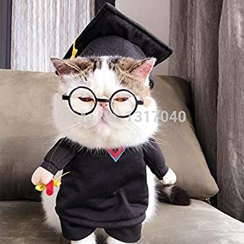 Funny Graduation Pet Cat Costumes Dog Suit Costumes Roupas para Gatos Winter Pet Dog Cat Clothes Dog Coat 5 Amazon Pet Supplies