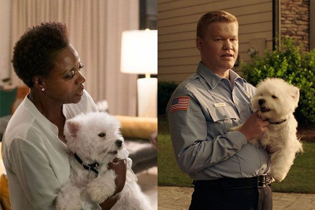 Meet Olivia the Cute Dog Who Starred in Both Widows and Game Night This Year