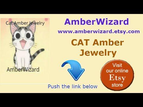 funny animal best vine animal cat fanciers TICA cat show 2018 cat amber jewelry by