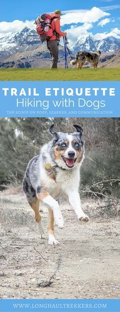 Hiking with Dogs Trail Etiquette Manifesto