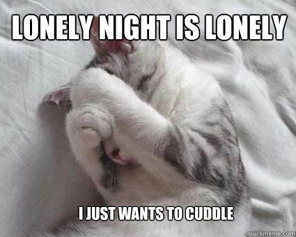 Gather the Fascinating Funny Lonely Animal Pictures