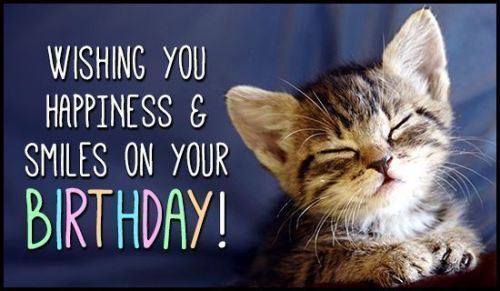 Happy birthday pics funny cat images to wish my best friend Happy Birthday Quotes for Friends Him Sister Daughter & Son