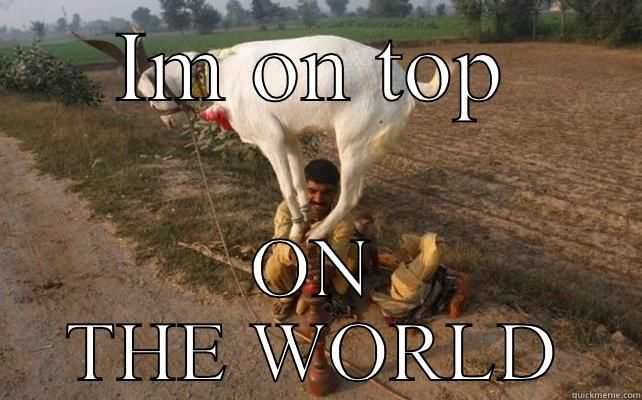 I m on top of the world IM ON TOP ON THE WORLD Misc