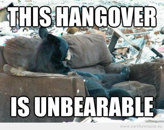 Funny Picture This hangover is unbearable