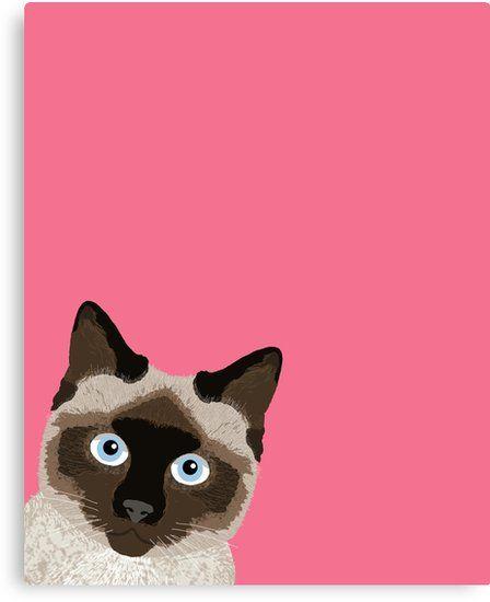 Peeking Siamese Cat Funny cat meme for cat lovers cat la s ts for cat