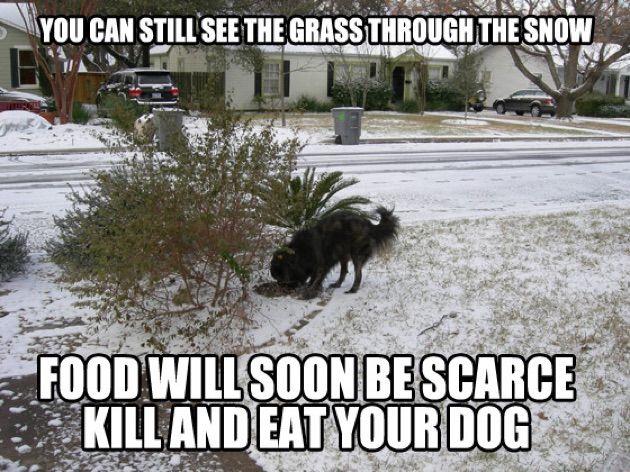 let it snow26