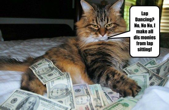 lap dancing caption Cats money