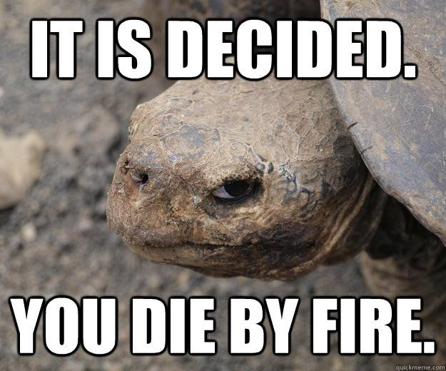It is decided You by fire