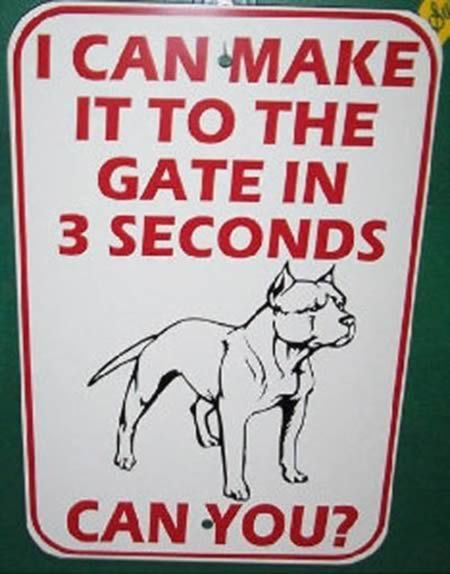12 Hilarious Dog Signs