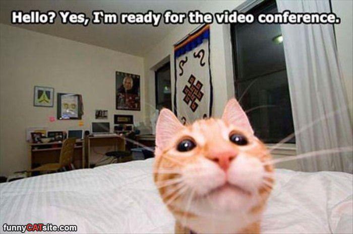 Yes I Am Ready