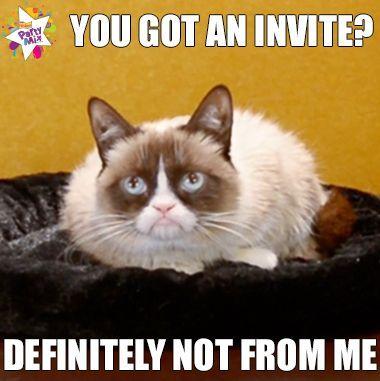 Grumpy Cat s Birthday Party