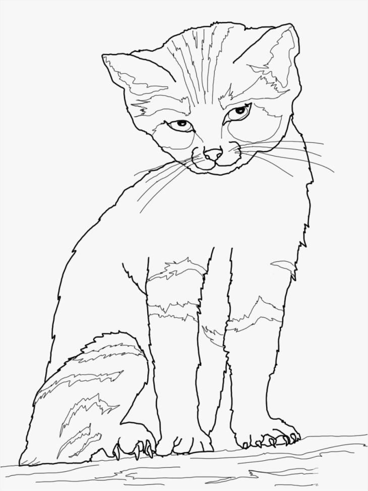 Halloween Cat Coloring Pages Elegant Free Halloween Printables Decorations Awesome More Free Cat Coloring Halloween