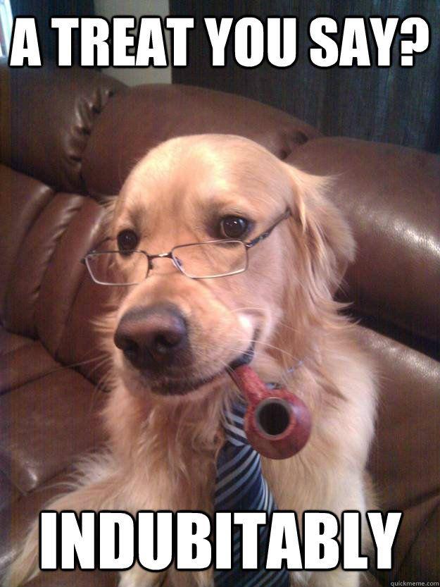 Gather the Shocking Funny I Miss Animal Memes