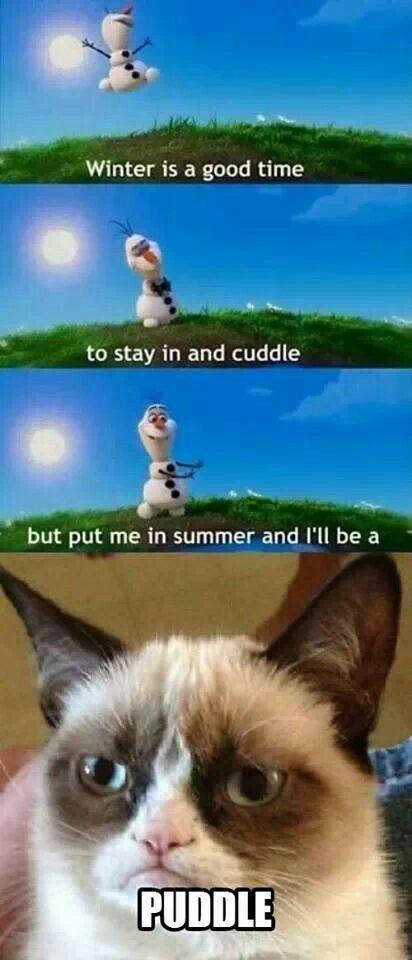 30 Grumpy cat Funny Quotes Grumpy cat Funny memes