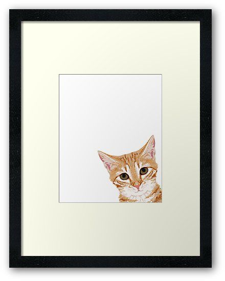 Peeking Orange Tabby Cat cute funny cat meme for cat la s cat people