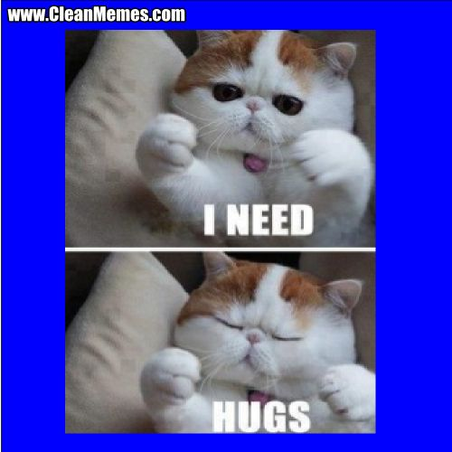 Author cleanmemesPosted on May 17 2014 Format ImageCategories Cat Memes Clean Funny Clean MemesTags Cat Memes Clean Funny