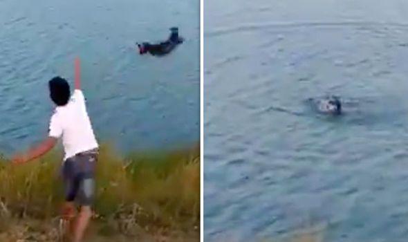 Thug launches dog into lake