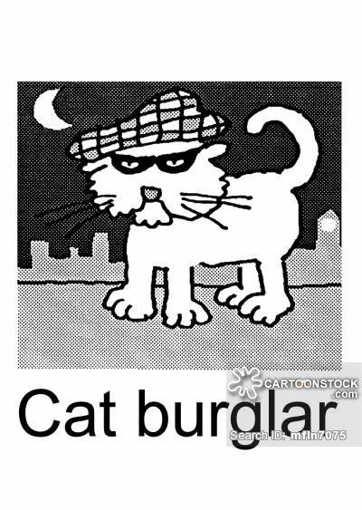 Cat Burglar cartoons Cat Burglar cartoon funny Cat Burglar picture Cat Burglar