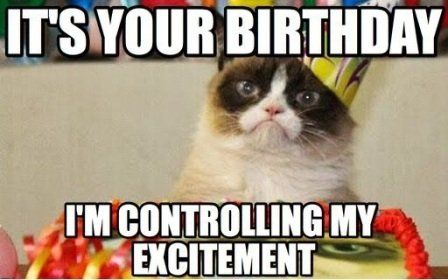 exictement cat birthday meme