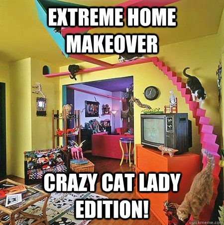 Extreme Home Makeover Crazy cat lady edition