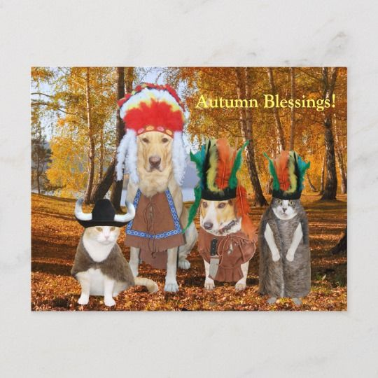 Funny Cat Dog Indians for Autumn Thanksgiving Holiday Postcard