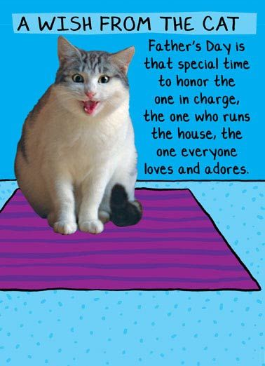 Wish from Cat Funny From the Cat Father s Day Oh wait that s me