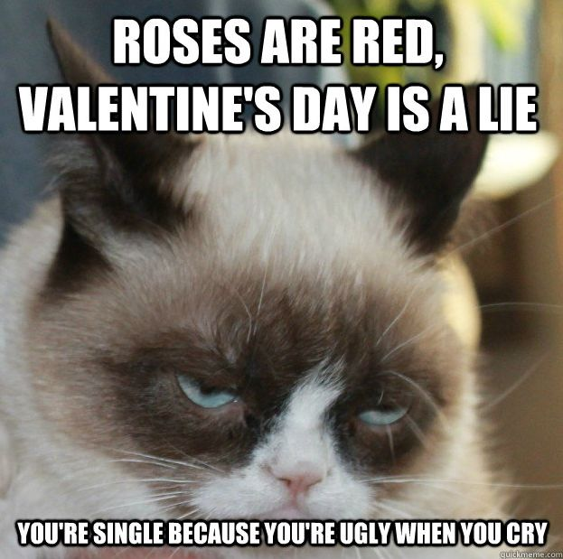Get the Beautiful Valentines Day Memes Funny Cat