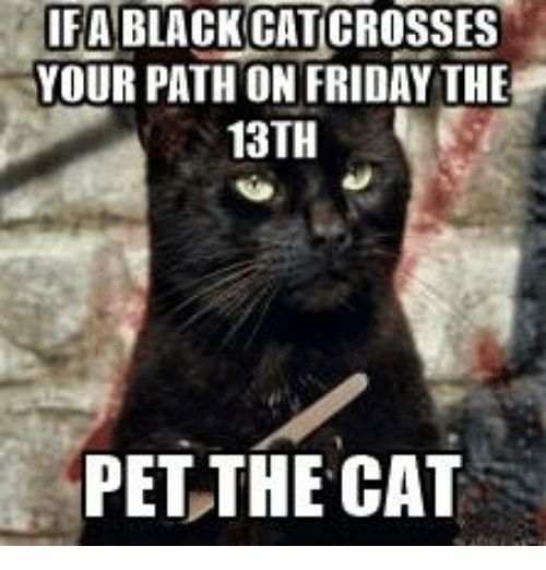 Memes Friday the 13th and 🤖 IFA BLACK CATICROSSES YOUR PATH ON FRIDAY