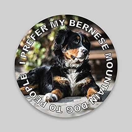 JMM Ind I Prefer My Bernese Mountain Dog to People Puppy Dog Vinyl Decal Sticker Car